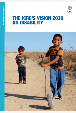 The ICRC'S Vision 2030 on Disability