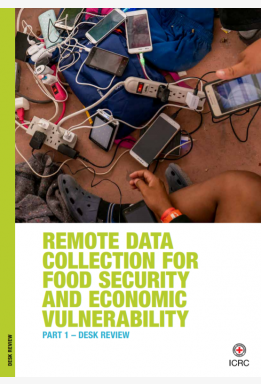 Remote Data Collection for Food Security and Economic Vulnerability: PART 1 – Desk Review