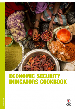 Economic Security Indicators Cookbook
