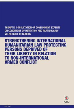Strengthening International Humanitarian Law Protecting Persons Deprived of their Liberty: Thematic Consultation of Government Experts on Conditions of Detention and Particularly Vulnerable Detainees