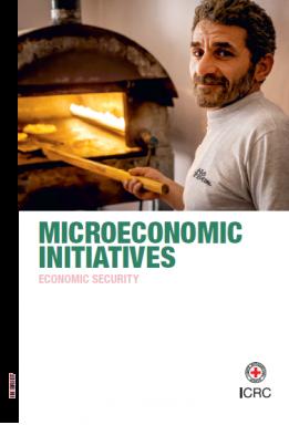 Microeconomic Initiatives – Economic Security